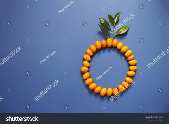 Circle formed for Kumquat and blue background